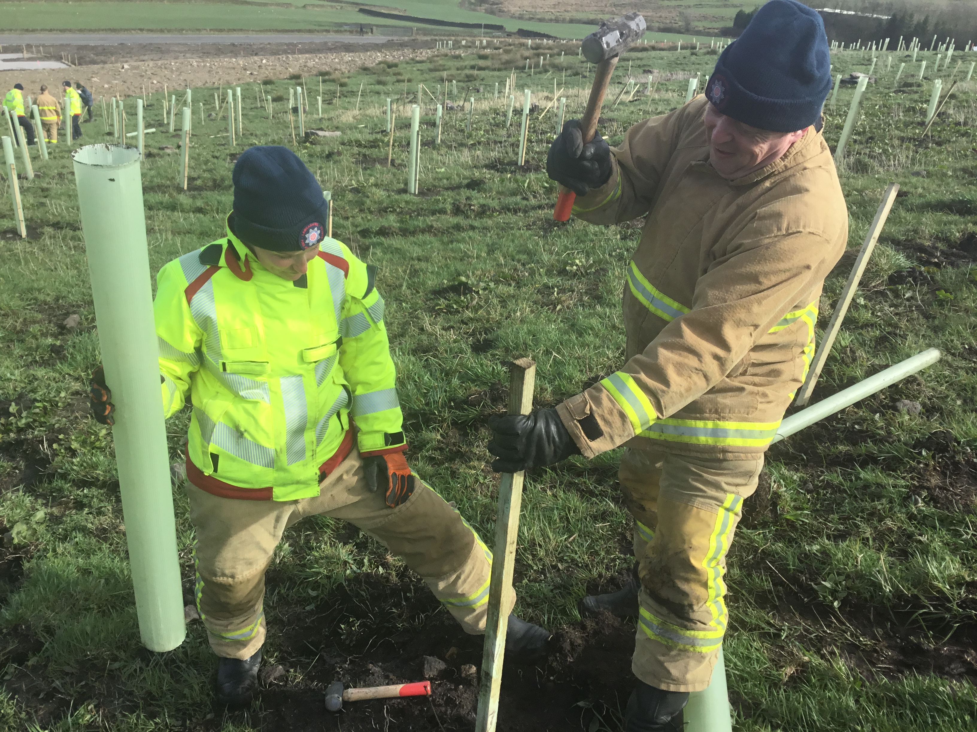 Shaun and Dave plant tree
